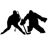 PAINTED Player & Goalie Removable Decal Set